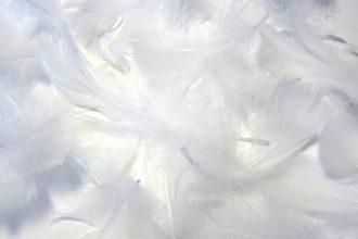 羽毛が片寄った場合はどうすればいいですか?
